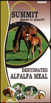 Dehydrated Alfalfa Meal - Summit Forages