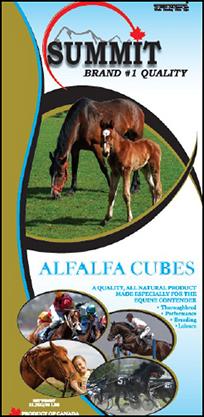 Alfalfa Cubes - Summit Forages