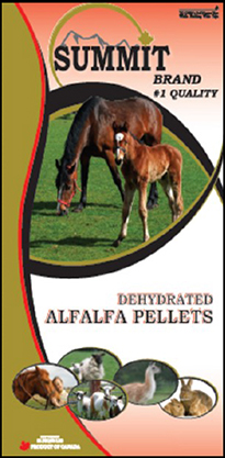Dehydrated Alfalfa Pellets - Summit Forages