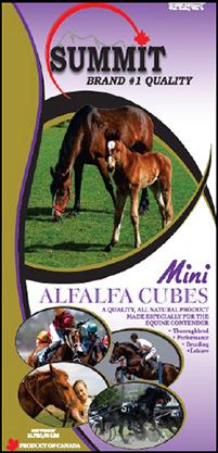 Mini Alfalfa Cubes - Summit Forages