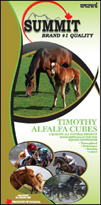 Timothy Alfalfa Cubes - Summit Forages
